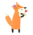 funny isolated fox with a flower vector image