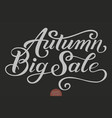 hand drawn lettering - autumn big sale elegant vector image