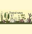 prehistoric plants vector image