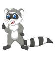 raccoon cartoon thumb up vector image vector image