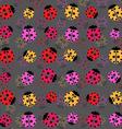 Beetles background vector image vector image