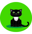 black cat with green eyes cartoon character vector image