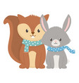 cute squirrel and fox with scarf autumn vector image vector image