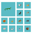 flat icons chipmunk pony gobbler and other vector image vector image