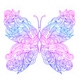 floral hand drawn butterfly vector image