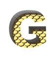 golden cutted figure g Paste to any background vector image vector image