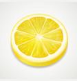 lemon juicy slice realistic fruit vector image