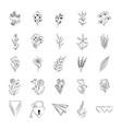 minimalist tattoo botanical flowers leaves stuff vector image vector image