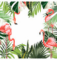 paradise pink flamingo birds with exotic leaves vector image vector image