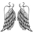 wings isolated on white background design element vector image vector image