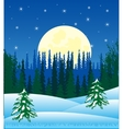 Winter night and wood vector image vector image