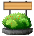 An empty wooden signboard above the plant vector image vector image