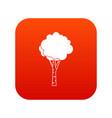 birch icon digital red vector image vector image