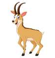 cute chamois cartoon smiling vector image
