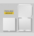 pizza box open and closed pack top view vector image