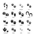 set footprint different animals vector image
