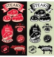 set of steak template for grilling vector image vector image