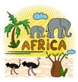 african animals and plants safari animals pattern vector image