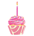 cupcake candle vector image vector image