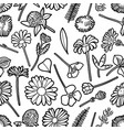 graphic seamless pattern wild meadow flowers vector image