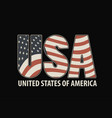 letters usa with image american flag vector image vector image