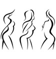 set stylized beautiful women silhouettes vector image vector image