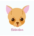 dog Chihuahua vector image