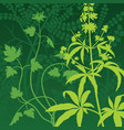 herb background vector image