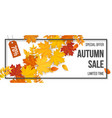 sale frame autumn fallen leaves vector image