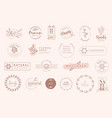 set vintage labels and badges for beauty vector image vector image