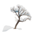 snowy tree - forest or park vector image