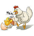 A hen and a chick vector image vector image