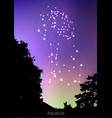 aquarius zodiac constellations sign with forest vector image vector image