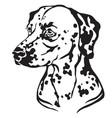 decorative portrait dog dalmatian vector image vector image