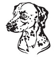 decorative portrait of dog dalmatian vector image