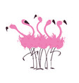 flock flamingos vector image vector image