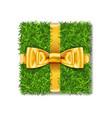 gift box 3d green grass box top view gold ribbon vector image