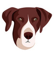pointer on white background vector image