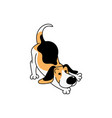 cute cartoon beagle dog in playful position vector image