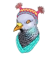 fashion bird animal anthropomorphic vector image