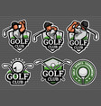 golf logo and badge set image vector image
