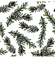 seamless endless pattern of rosemary branch vector image