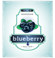 Three blueberries on product label or emblem vector image vector image