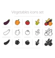 Vegetables icons set vector image vector image