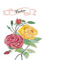 Invitation rose greeting card vector image