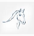 horse animal wild one line design vector image