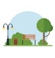 tree bench lamp and trash can in park vector image vector image