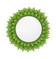 circle leaves frame vector image vector image