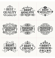 Collection of frames and design elements vector image vector image