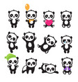 cute cartoon chinese panda bear character vector image vector image